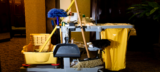 janitorial-cleaning mini